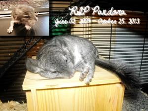 RIP Pandora